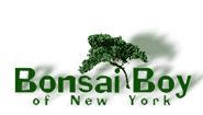 Bonsai Boy Of New York-CouponOwner.com